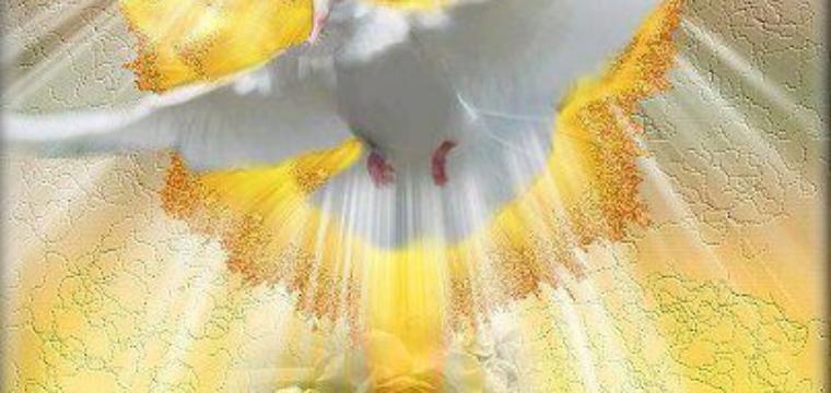 Lo Spirito intercede per noi