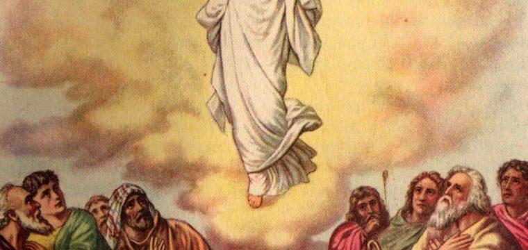 L'ascensione del Signore